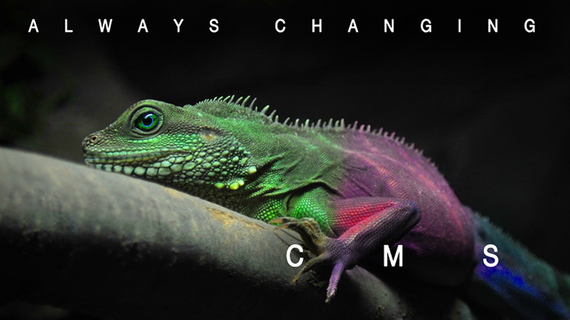 CMS - always changing